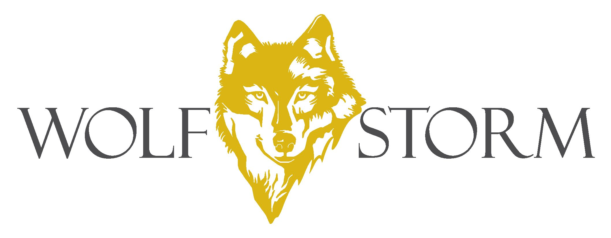 Marketing and E-commerce Internship – Wolf & Storm